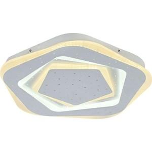 Потолочный светодиодный светильник F-Promo 2281-5C