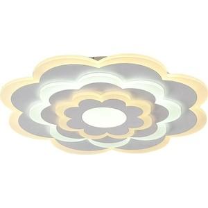 Потолочный светодиодный светильник F-Promo 2286-5C