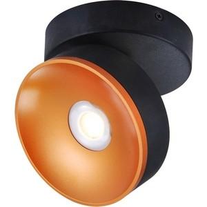 Светодиодный спот Lussole LSP-8017 настенный светильник lussole lsp 8017 черный