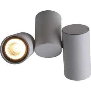 Потолочный светильник Divinare 1354/03 PL-2 спот divinare 1354 03 pl 1