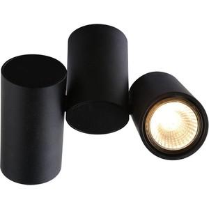 Потолочный светильник Divinare 1354/04 PL-2
