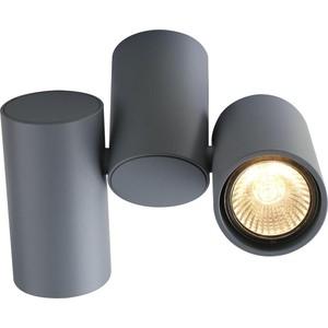 Потолочный светильник Divinare 1354/05 PL-2